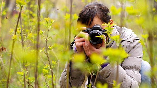 CONCORSO FOTOGRAFICO BOSCULTURA 2015 – 1° EDIZIONE
