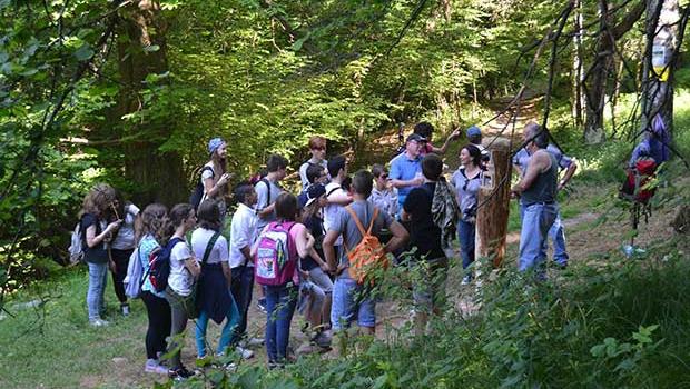 A SCUOLA NEL BOSCO: imparare a vivere la natura