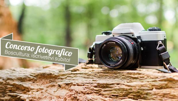 CONCORSO FOTOGRAFICO BOSCULTURA 2016: II edizione
