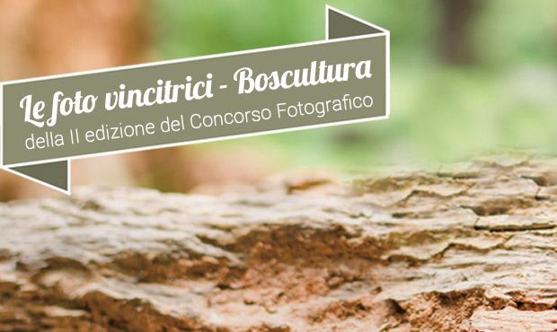 Vincitori della II edizione del Concorso Fotografico BOSCULTURA 2016